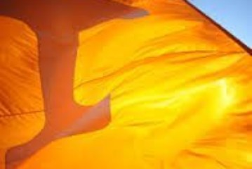 The State of the Vols : Summer 2015