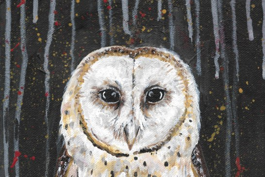 Album review: Adeem the Artist, The Owl EP