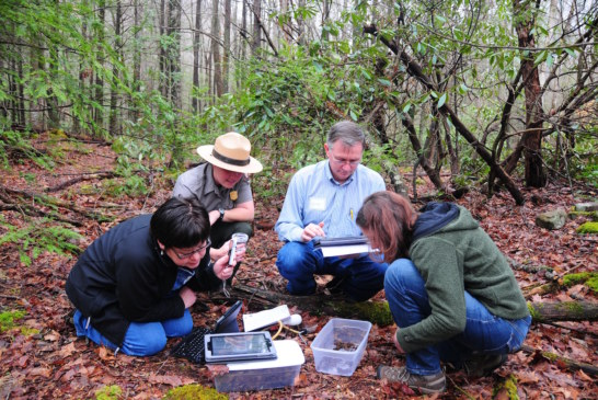 Arconic and Haiman Foundations Fund STEM in Smokies
