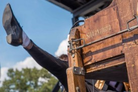 Low Cut Connie, T-Pain, Sturgill Simpson and Muse go big at Bonnaroo